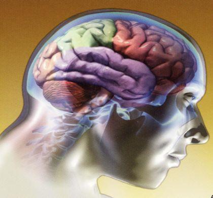 amnesia y causas