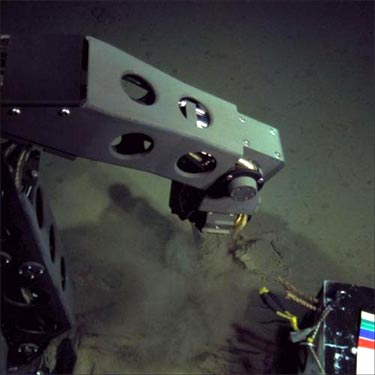 Robot Nereus