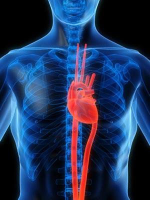 la inflamación es la causa de enfermedades cardiacas