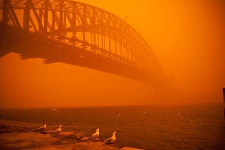 puente de la bahia de Sydney en el amanecer rojo