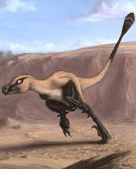 linheraptor nuevo dinosaurio