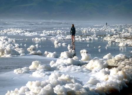 Espuma de mar en las playas de California
