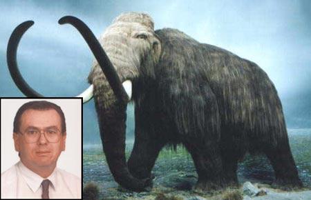 Mamut extinto por causas ajenas a acción humana según estudio