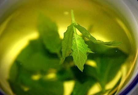 Té verde efectivo contra cancer de piel