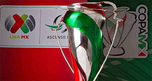 Copa MX 2013