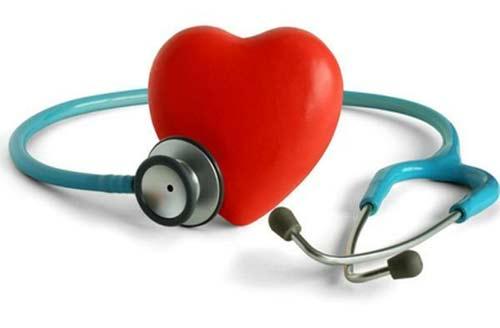 Corazón sin colesterol