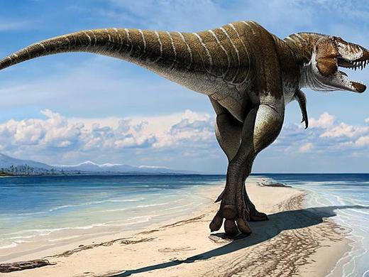 Descubren fósiles de dinosaurios