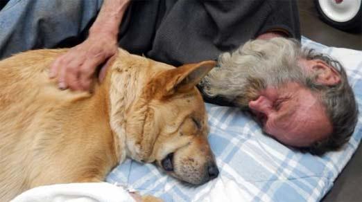 Steve Anthony, al lado de su perro River que fue operado de la pelvis