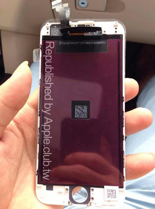 Fotos del iPhone 6