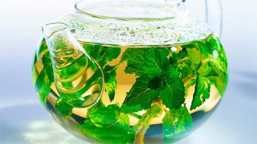 Cómo preparar té de menta
