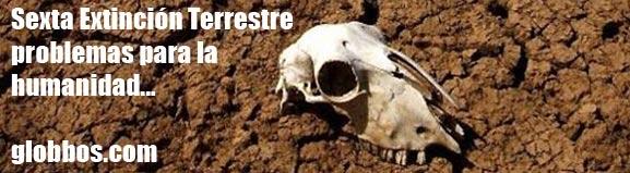 Posible extinción masiva terrestre