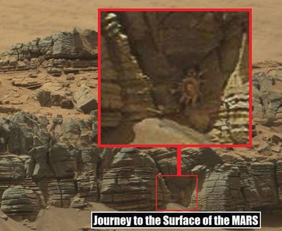 Cangrejo marciano aparece en fotos de la NASA