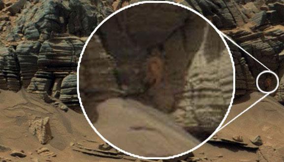 Captan a una araña en Marte en una pared rocosa