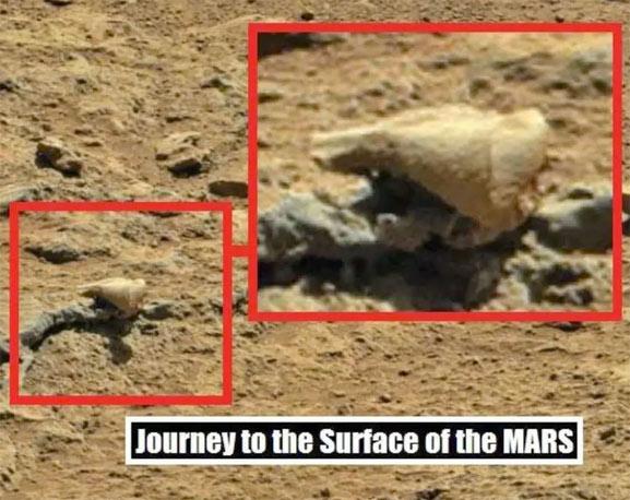 Un cráneo de un marciano encontrado en Marte