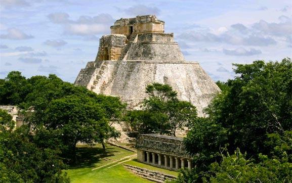 Uxmal, Yucatán, encuentran cientos de plantas medicinales